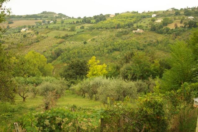 Atri, 4 Locali Locali, ,2 BagniBagni,Rustico / Casale,Vendita,Via San Massimiliano Kolbe,1459